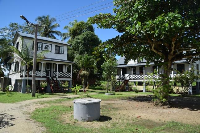 Suriname Gerardine 10