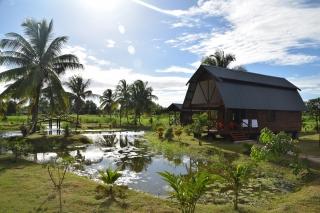Suriname Gerardine 13