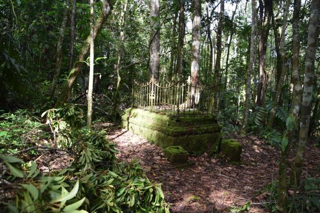 Suriname Gerardine 4