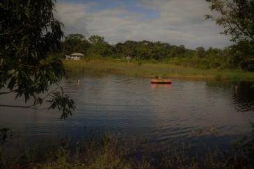 Suriname Gerardine 8