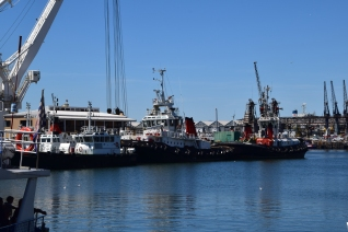 tugboats at cape town